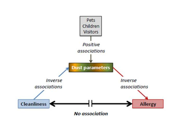 Bloomfield asthma blog flow chart