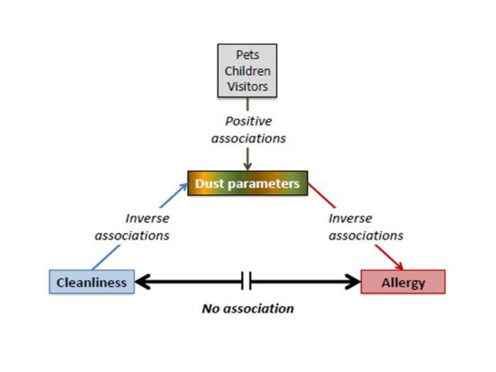 Bloomfield asthma blog flow chart