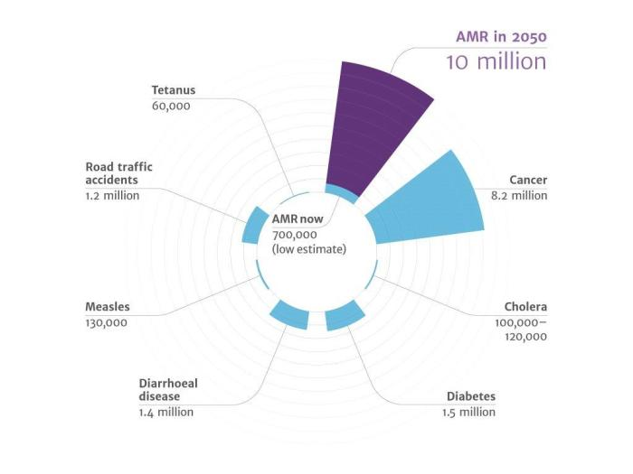 amr review