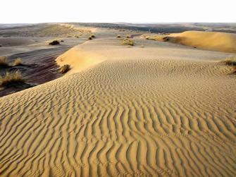 Karakum-Desert-Turkmenistan.-Author-David-Staney.-Licensed-under-the-Creative-Commons-Attribution